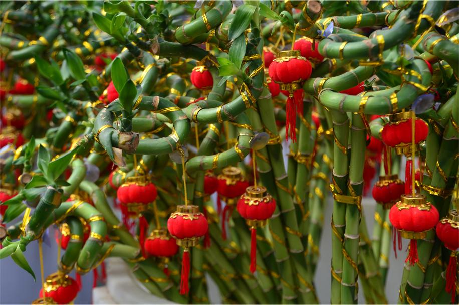 cny-flower-market_15