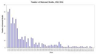 HK Maternal Mortality Rate. Photo: HealthyHK, Department of Health